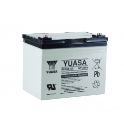 Aperçu du produit BATTERIE YUASA  REC36-12I